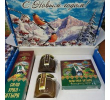 "New year's gift set ""Power of Ural-Batyr"" with honey"