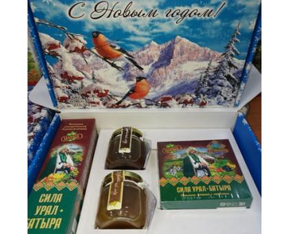 Подарочный набор новогодний «Сила Урал-Батыра» с медом